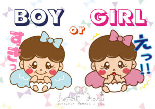 gender reveal decoration cakes ジェンダーリビール デコレーションケーキ boy or girl